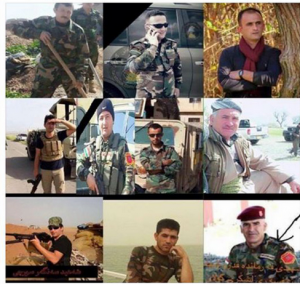 Peshmerga Fighters Killed in Tesgofa