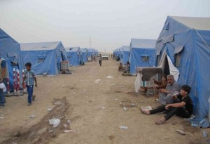 Dispalced People Camps-Falluja