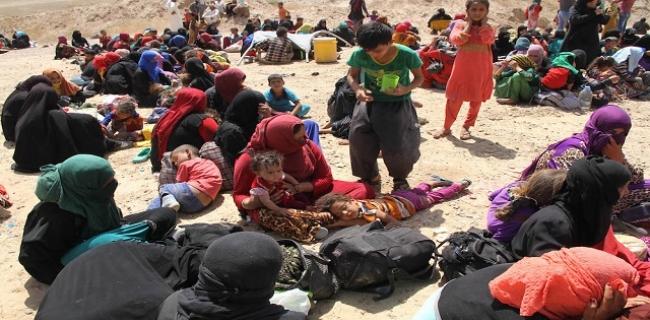 Hawija Displaced People (BasNews)